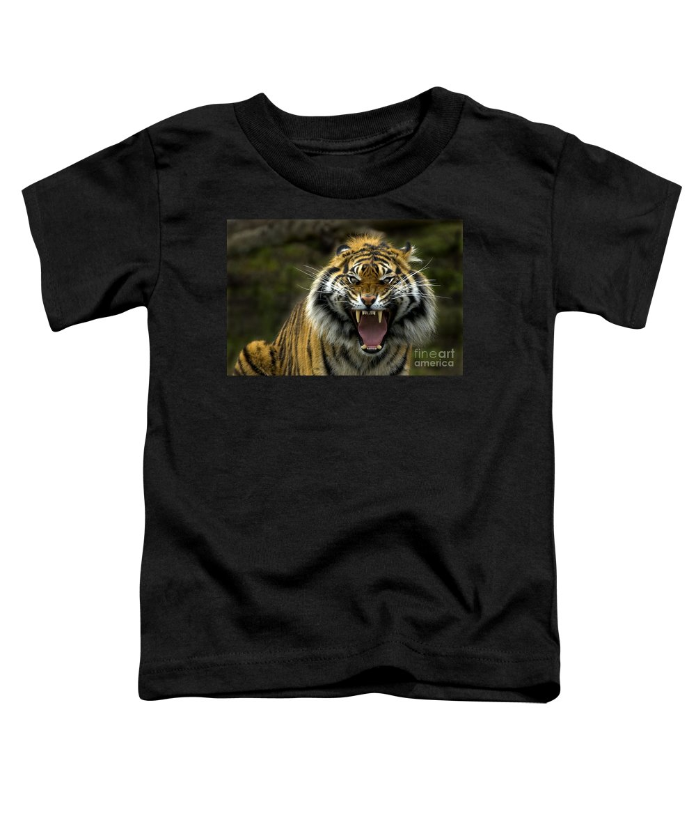 Tiger Toddler T-Shirt featuring the photograph Eyes Of The Tiger by Mike Dawson