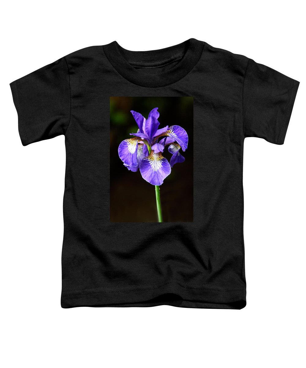 3scape Photos Toddler T-Shirt featuring the photograph Purple Iris by Adam Romanowicz