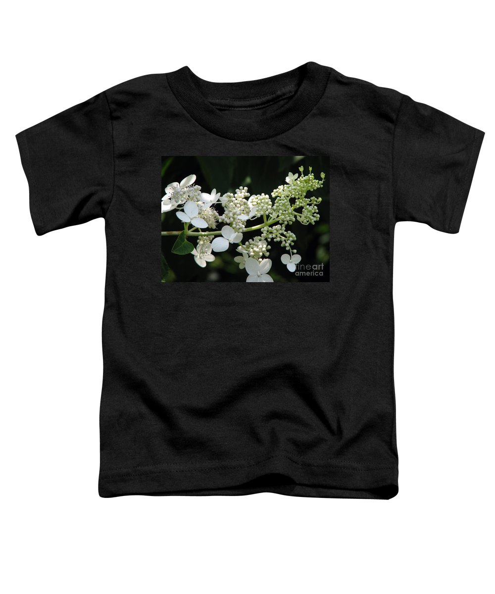 Hydrangea Toddler T-Shirt featuring the photograph Simply by Amanda Barcon