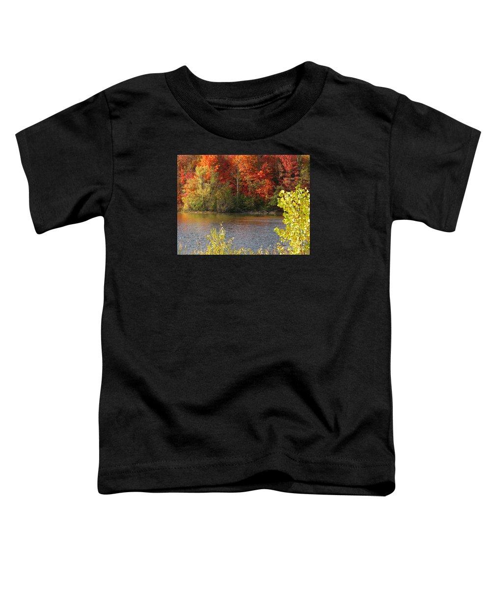 Autumn Toddler T-Shirt featuring the photograph Sunlit Autumn by Ann Horn