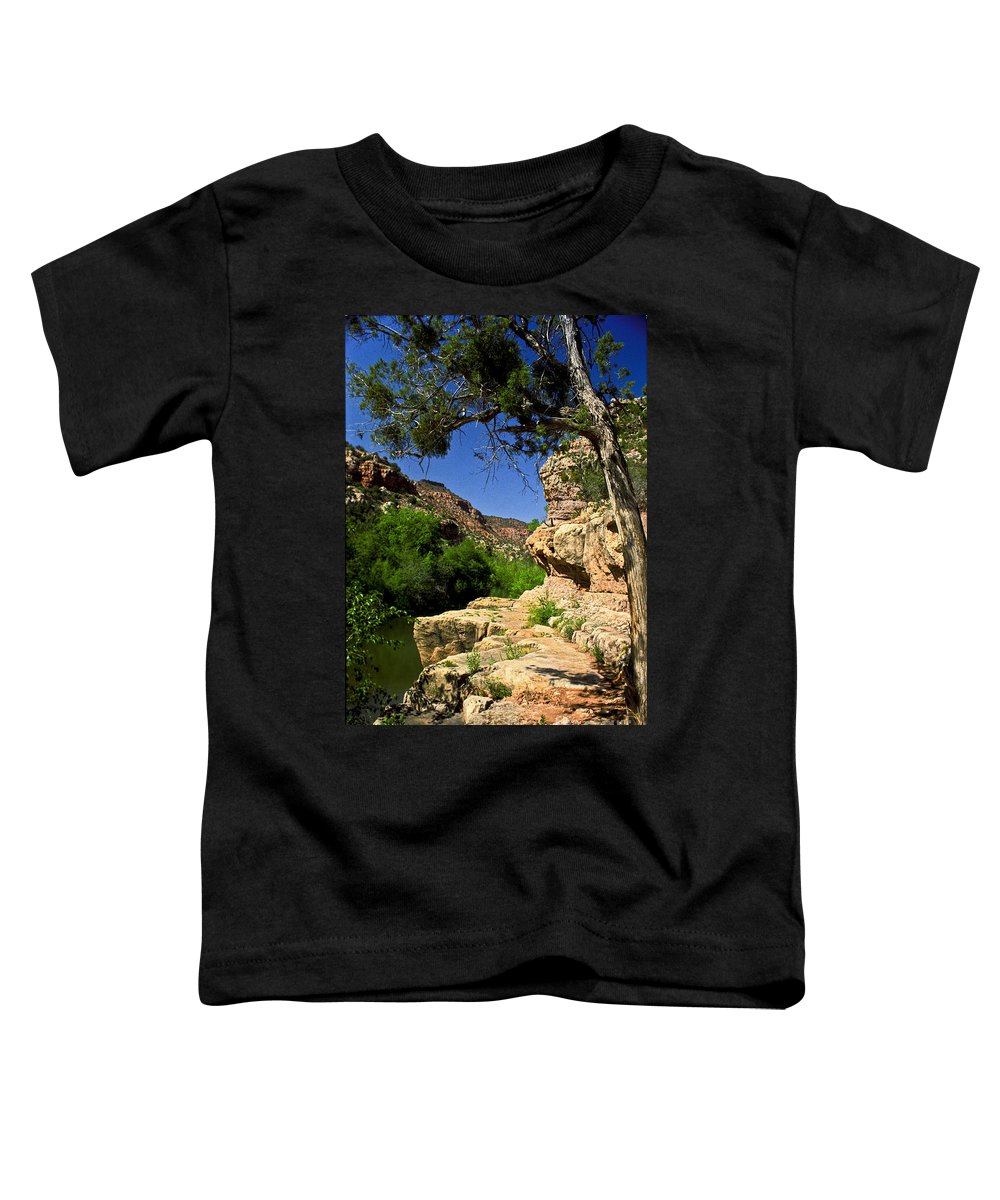 Arizona Toddler T-Shirt featuring the photograph Sycamore Canyon by Kathy McClure