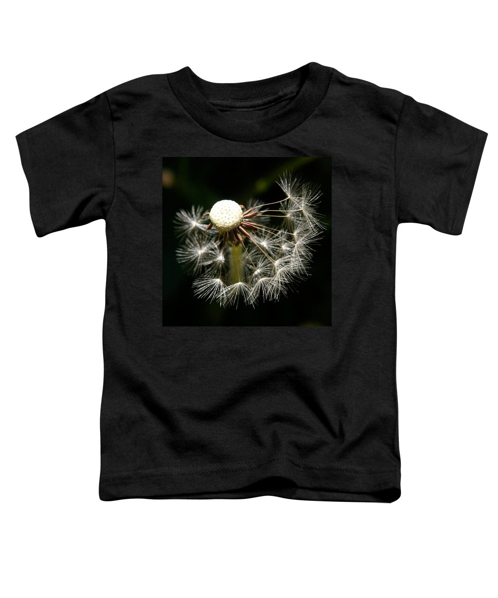 Dandelion Toddler T-Shirt featuring the photograph Dandelion by Ralph A Ledergerber-Photography