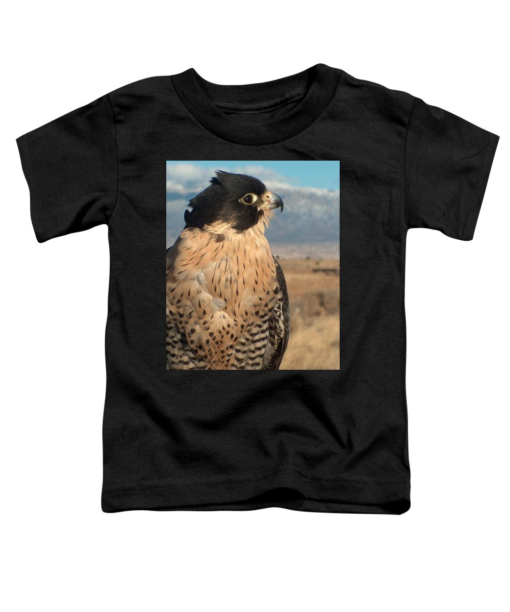 Peregrine Falcon Toddler T-Shirt featuring the photograph Peregrine Falcon by Tim McCarthy