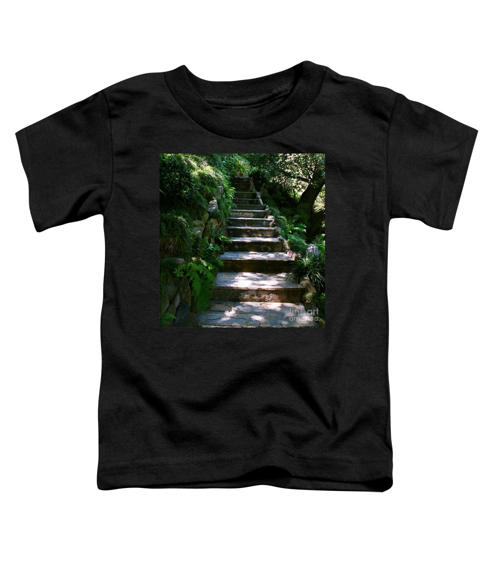 Nature Toddler T-Shirt featuring the photograph Stone Steps by Dean Triolo