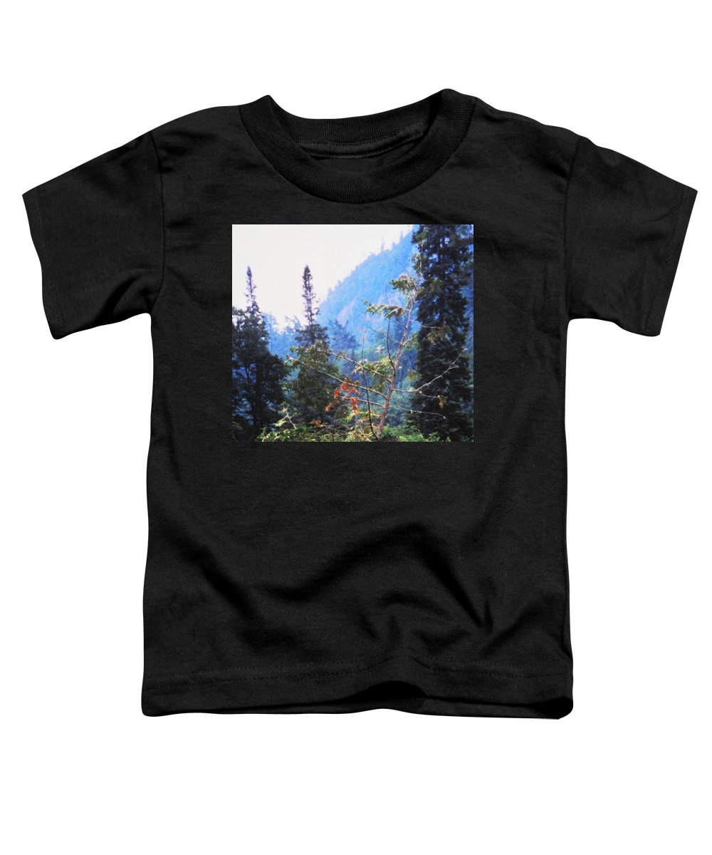 Agawa Toddler T-Shirt featuring the photograph Agawa Canyon by Ian MacDonald