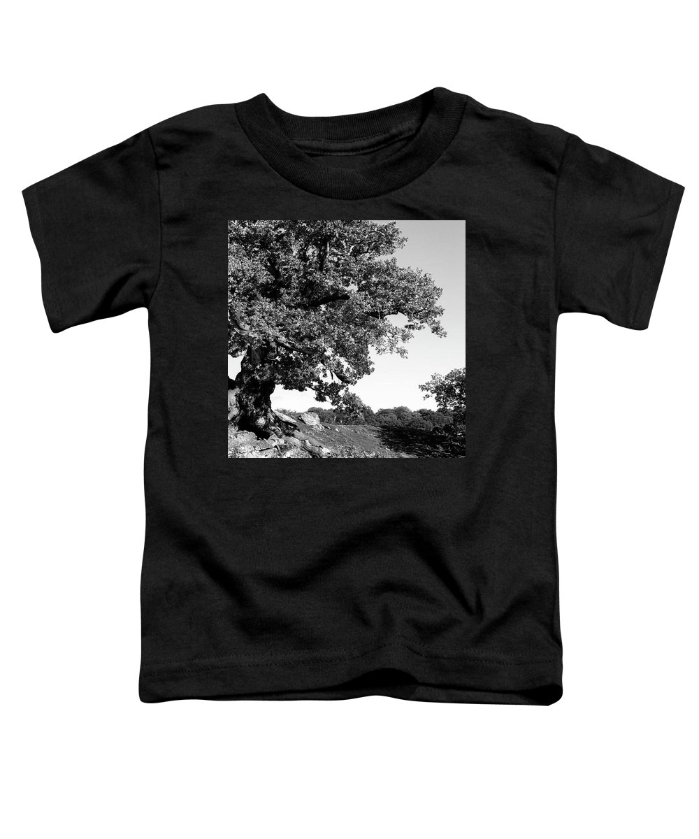 Woodland Toddler T-Shirt featuring the photograph Ancient Oak, Bradgate Park by John Edwards