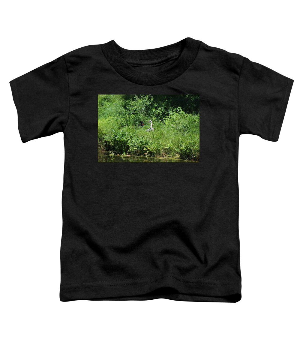Marsh Toddler T-Shirt featuring the photograph Annoyed - Heron and Red Winged Blackbird 5 of 10 by Colleen Cornelius