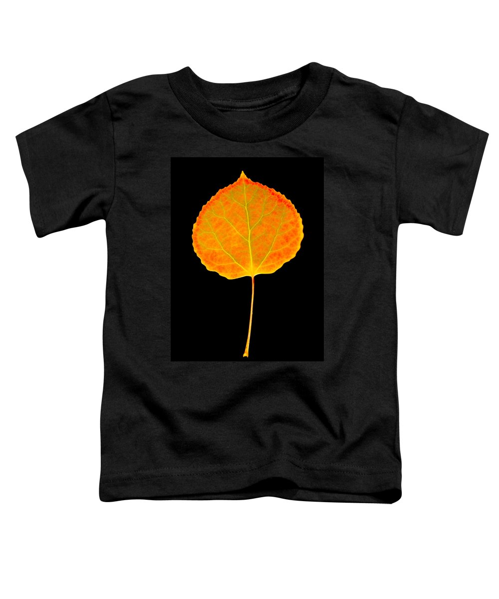 Leaf Toddler T-Shirt featuring the photograph Aspen Leaf by Marilyn Hunt