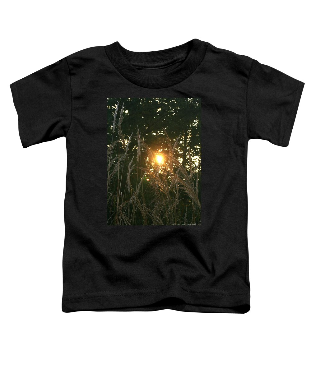 Light Toddler T-Shirt featuring the photograph Autumn Grasses In The Morning by Nadine Rippelmeyer