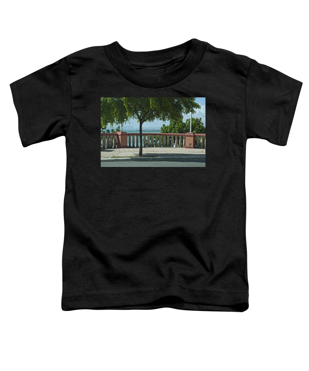 Landscape Toddler T-Shirt featuring the photograph Balcony On The Beach In Naguabo Puerto Rico by Tito Santiago