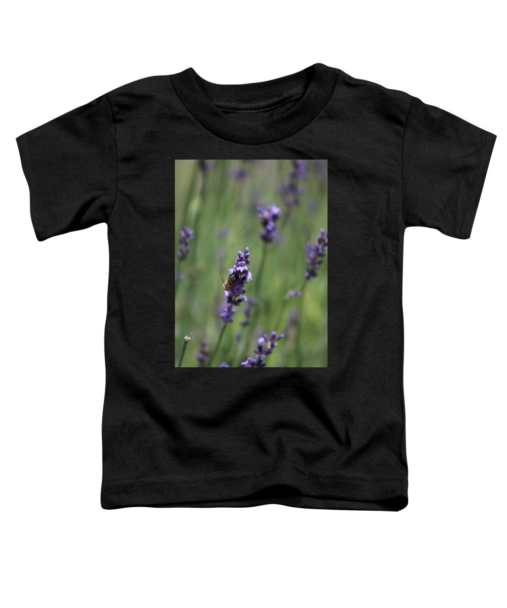 Deep Purple Lavender Toddler T-Shirt featuring the photograph Bee on Deep Purple Lavender Spike by Colleen Cornelius