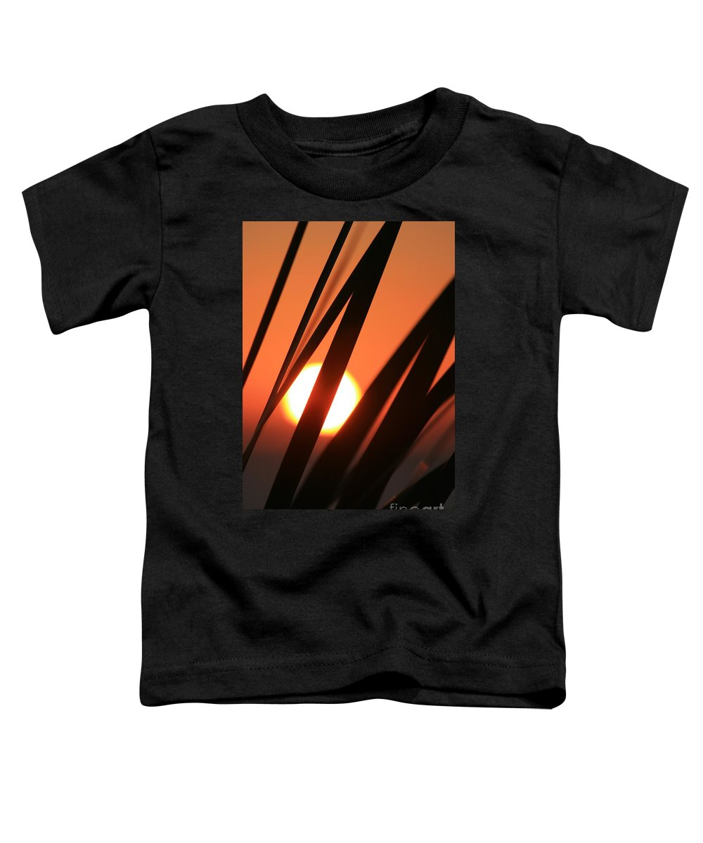 Sun Toddler T-Shirt featuring the photograph Blazing Sunset And Grasses by Nadine Rippelmeyer