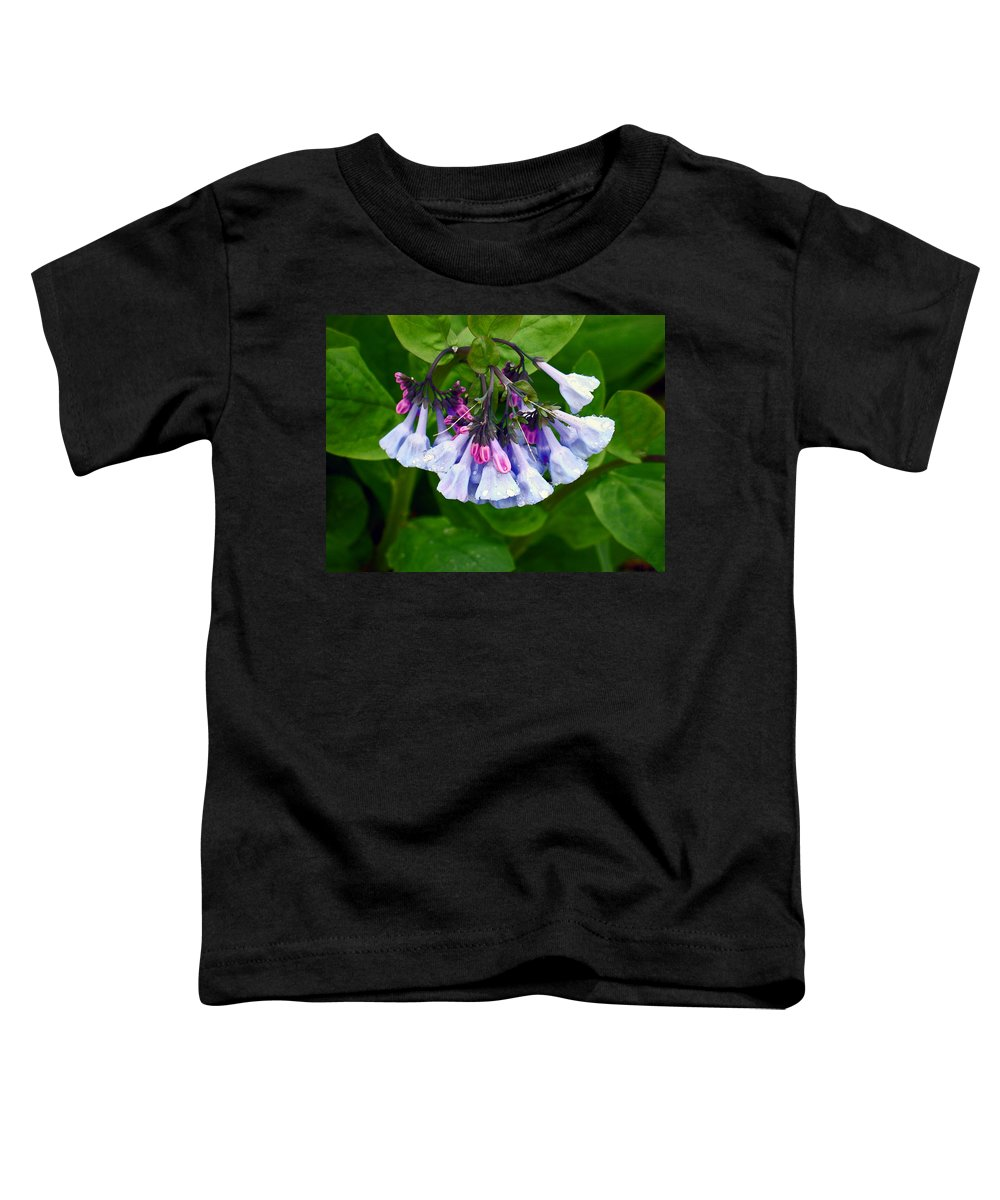 Native Landscape Toddler T-Shirt featuring the photograph Blue Bells by Steve Karol