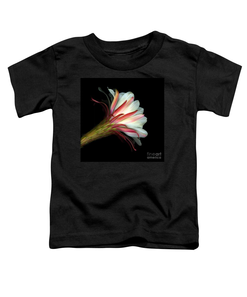 Scanart Toddler T-Shirt featuring the photograph Cactus Flower by Christian Slanec