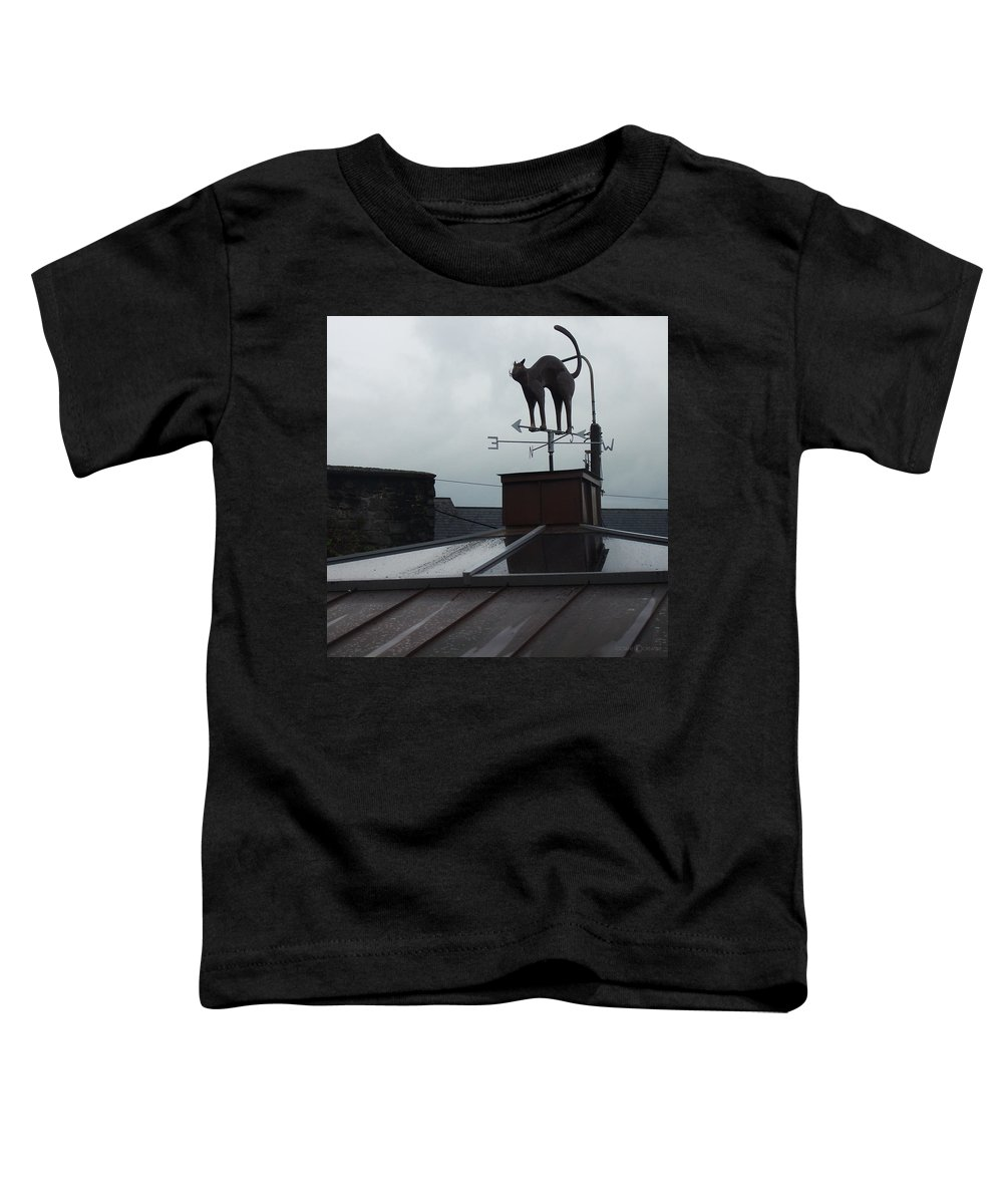 Cat Toddler T-Shirt featuring the photograph Cat On A Cool Tin Roof by Tim Nyberg