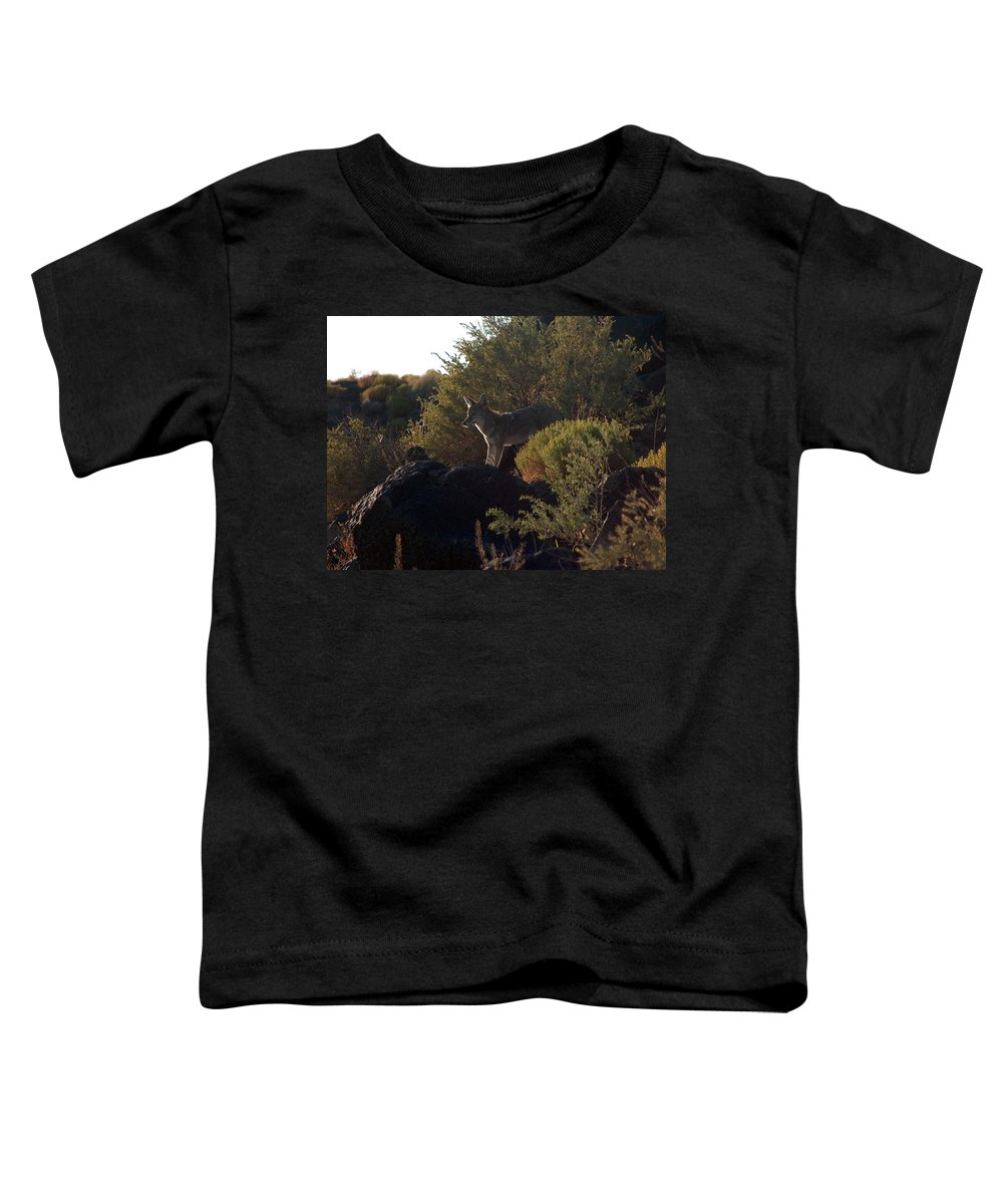 Coyote Toddler T-Shirt featuring the photograph Coyote At The Petrogyphs 2 by Tim McCarthy