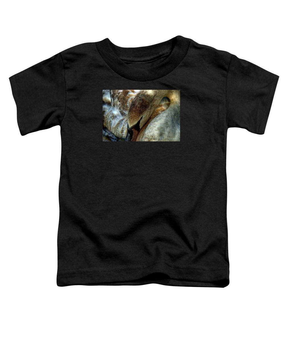 Swan Toddler T-Shirt featuring the photograph Cygnet Swan by Colin Bailey