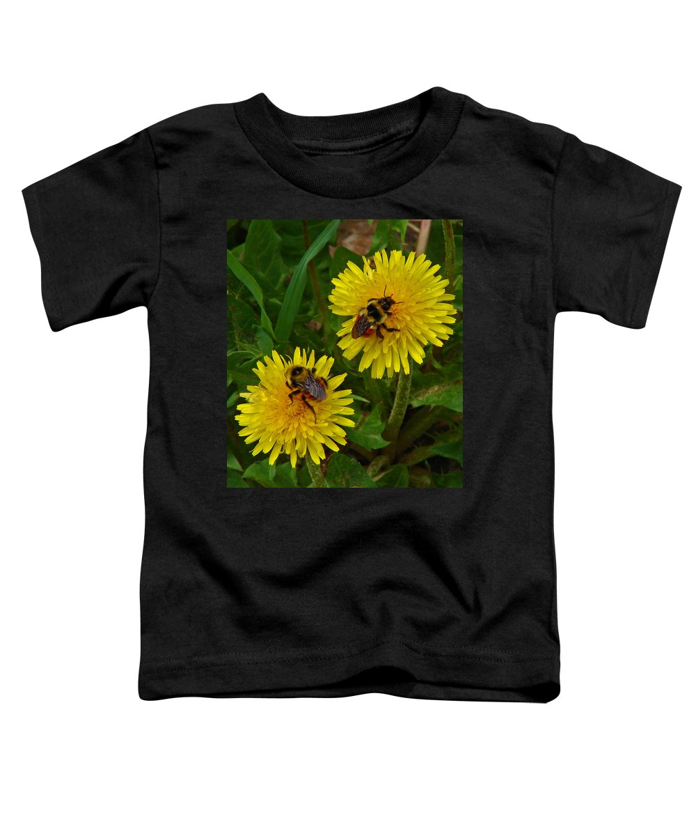 Dandelion Toddler T-Shirt featuring the photograph Dandelions And Bees by Heather Coen