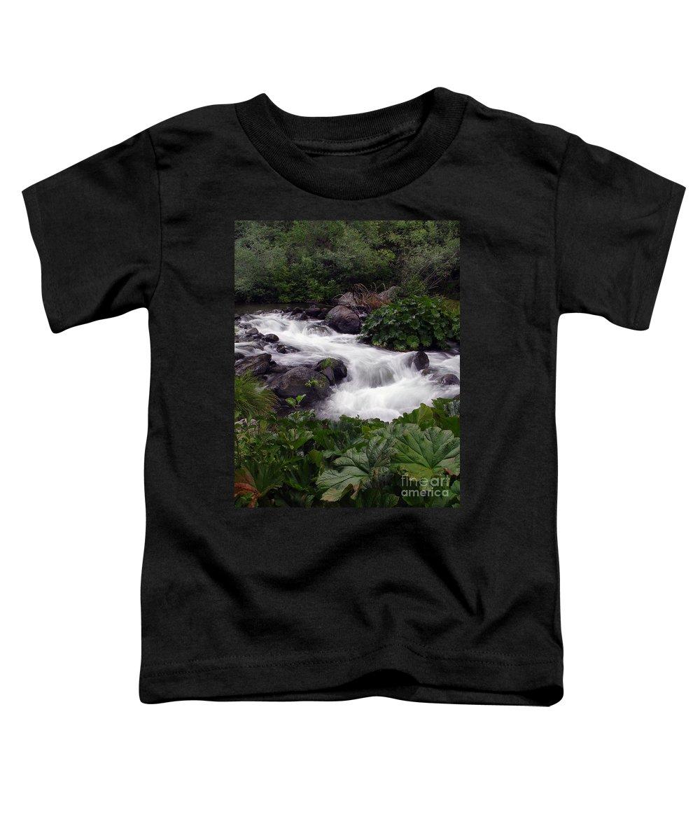 Creek Toddler T-Shirt featuring the photograph Deer Creek 07 by Peter Piatt