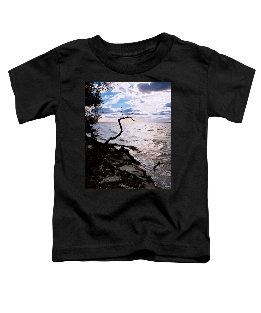 Barnegat Toddler T-Shirt featuring the photograph Driftwood Dragon-barnegat Bay by Steve Karol