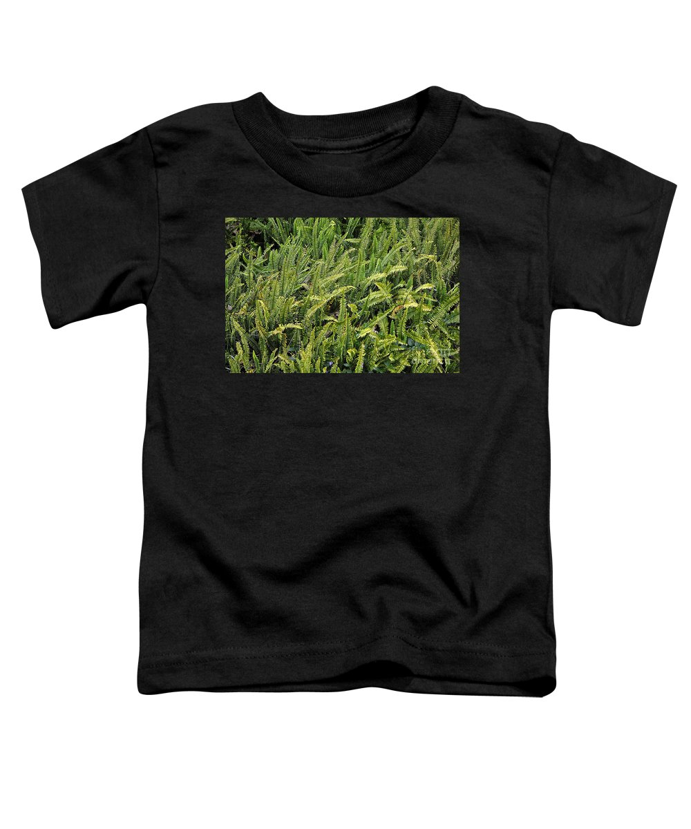 Clay Toddler T-Shirt featuring the photograph Fern by Clayton Bruster