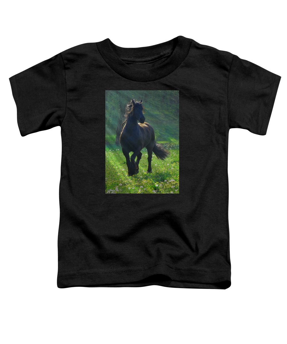 Horses Toddler T-Shirt featuring the photograph Friesian Sun by Fran J Scott