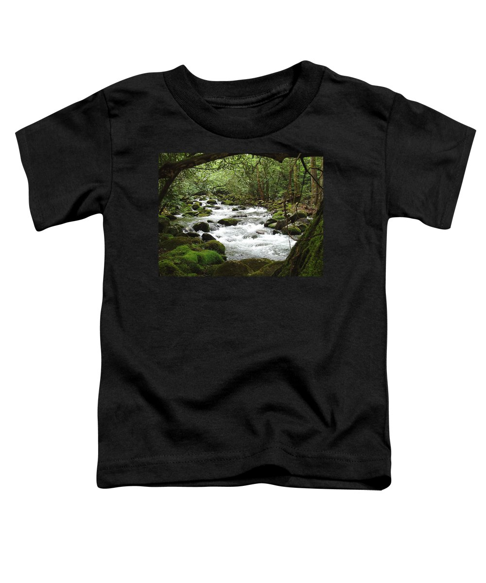 Smoky Mountains Toddler T-Shirt featuring the photograph Greenbrier River Scene 2 by Nancy Mueller