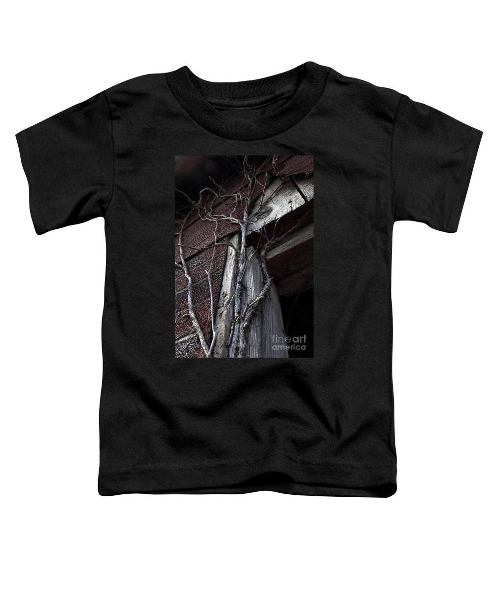 Broken Toddler T-Shirt featuring the photograph Growth by Amanda Barcon