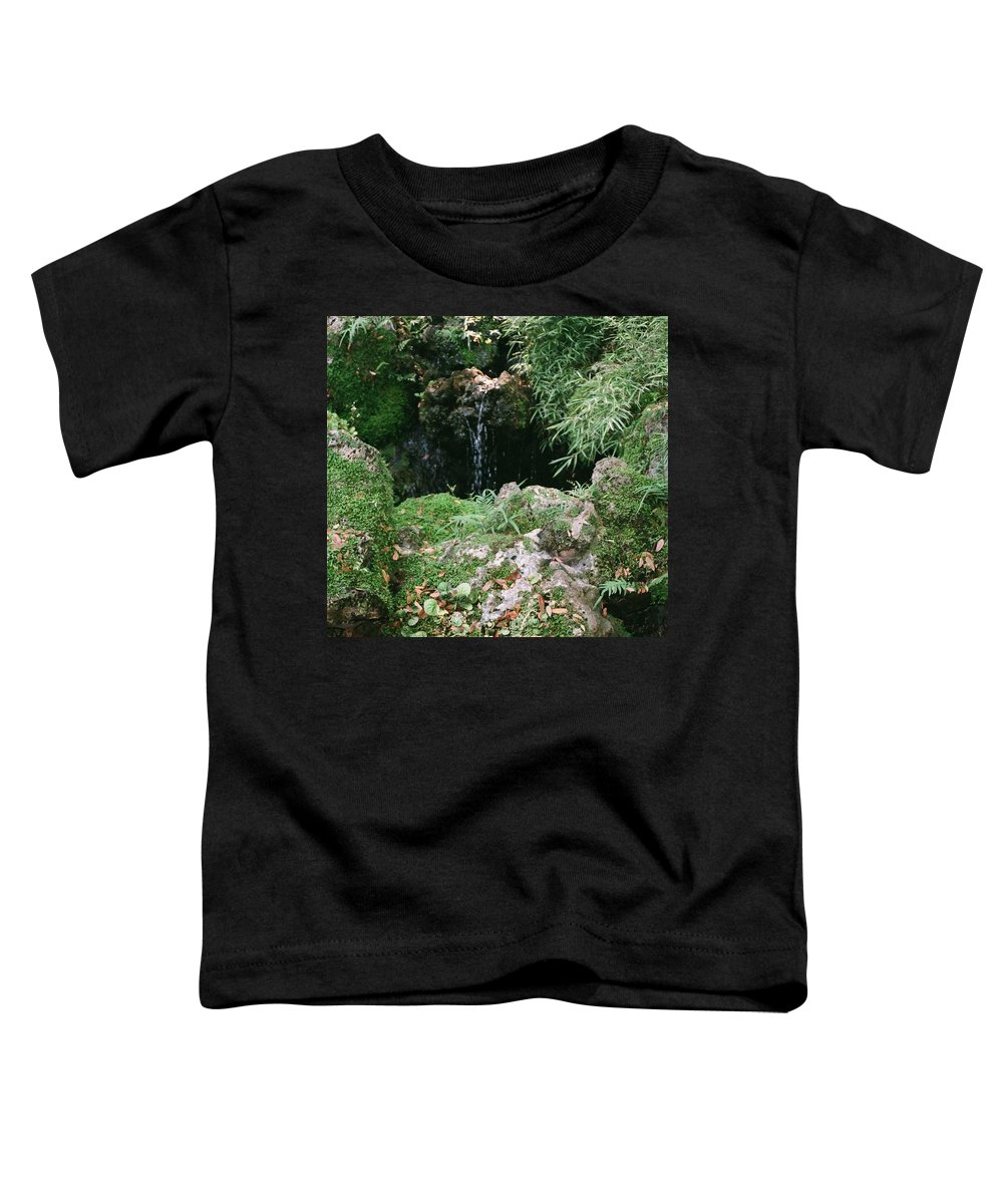 Nature Toddler T-Shirt featuring the photograph Hidden Waterfall by Dean Triolo
