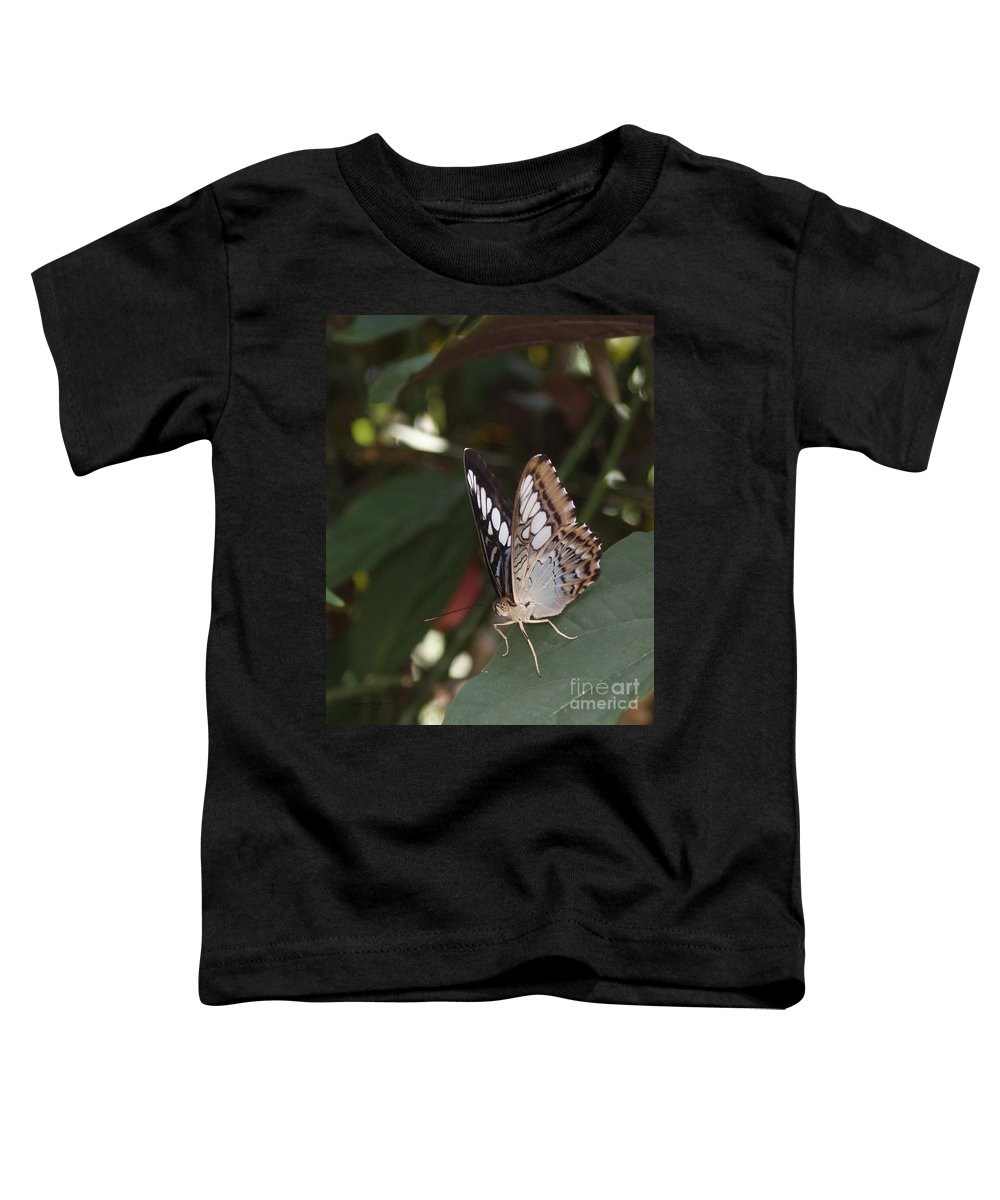Butterfly Toddler T-Shirt featuring the photograph Hints Of Blue by Shelley Jones