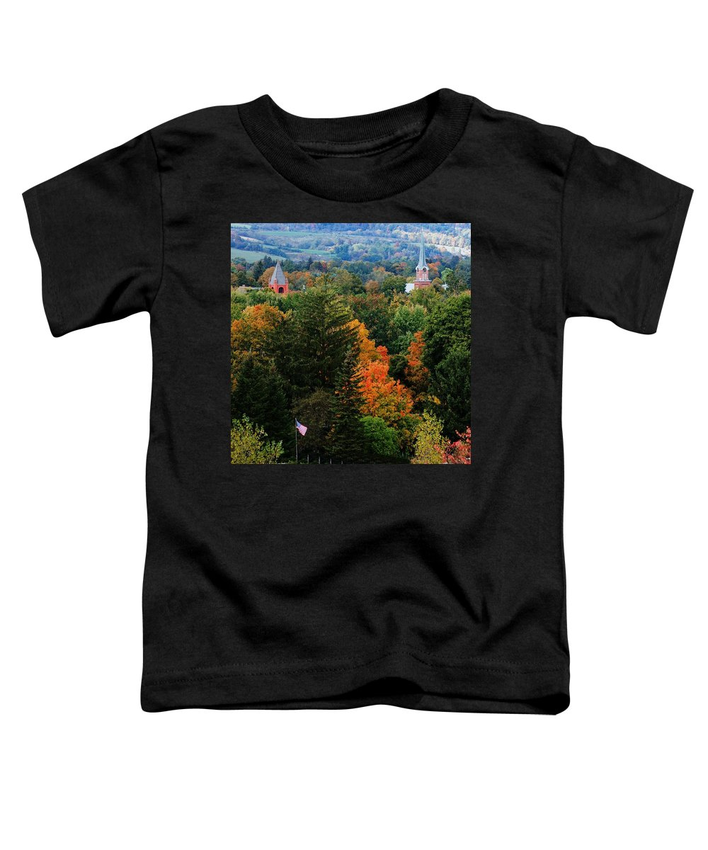 Landscape Toddler T-Shirt featuring the photograph Homer Ny by David Lane
