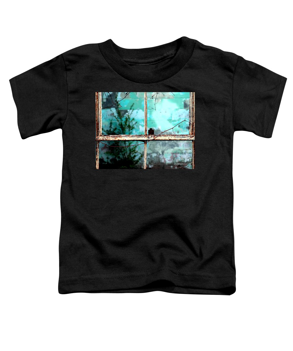 Windows Toddler T-Shirt featuring the photograph In Or Out by Amanda Barcon