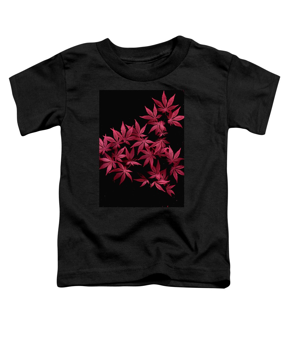 Japanese Maple Toddler T-Shirt featuring the photograph Japanese Maple Leaves by Wayne Potrafka