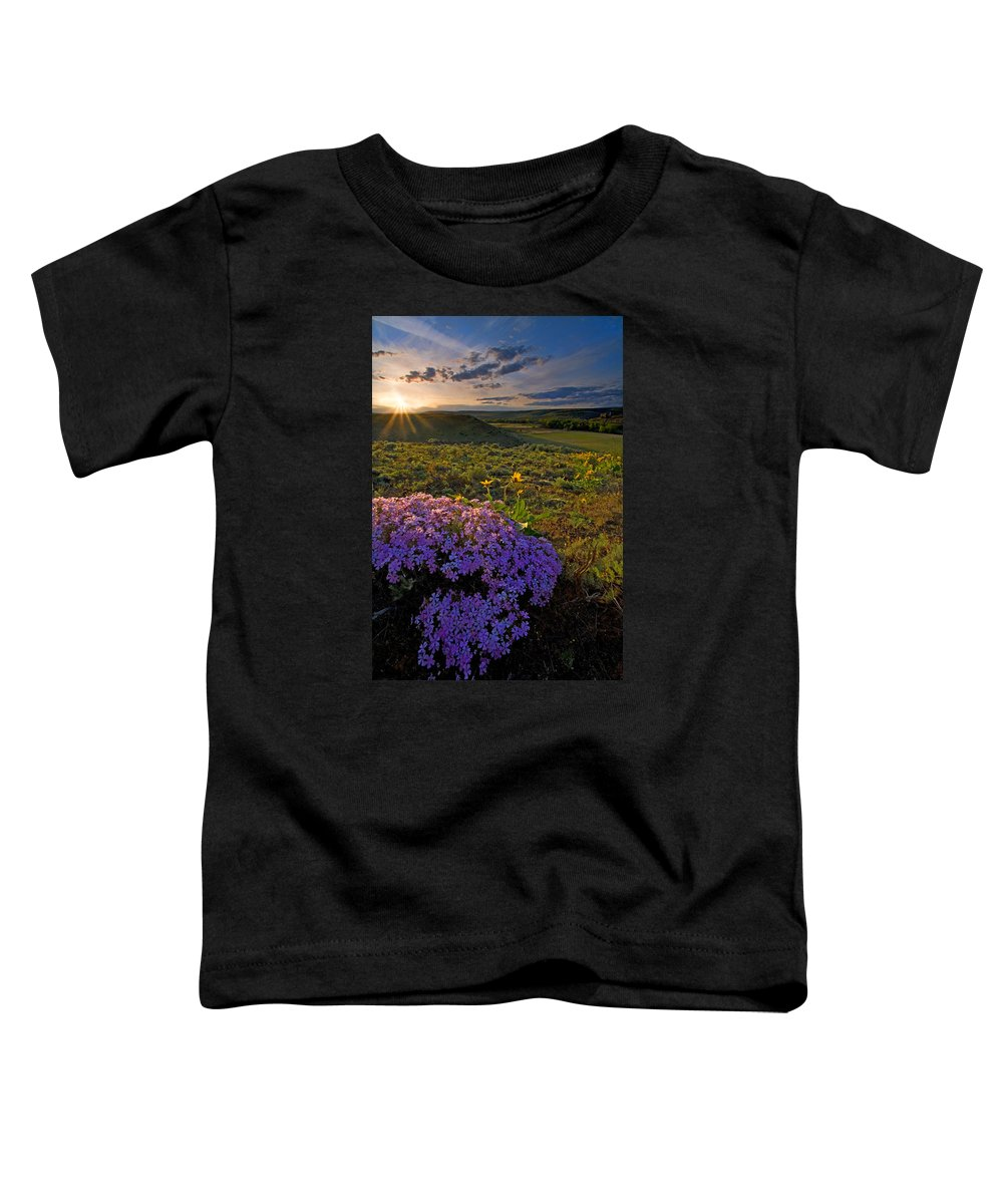 Wildflowers Toddler T-Shirt featuring the photograph Last Light Of Spring by Mike Dawson