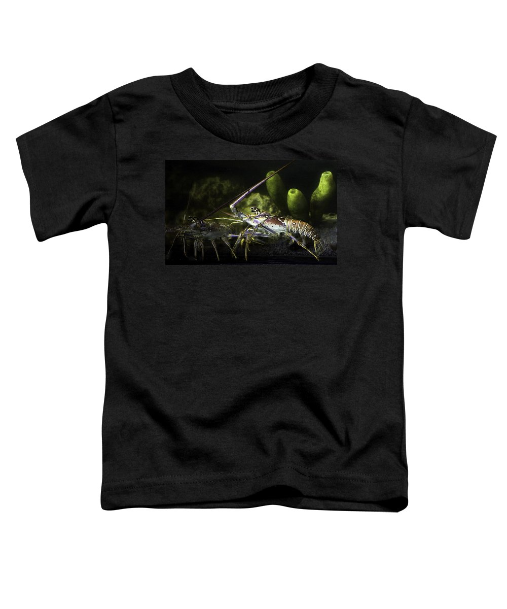 Lobster Toddler T-Shirt featuring the photograph Lobster In Love by Marilyn Hunt