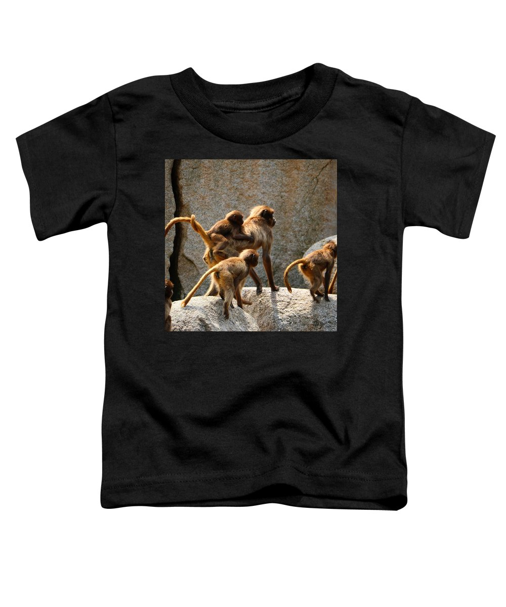 Brown Photographs Toddler T-Shirts