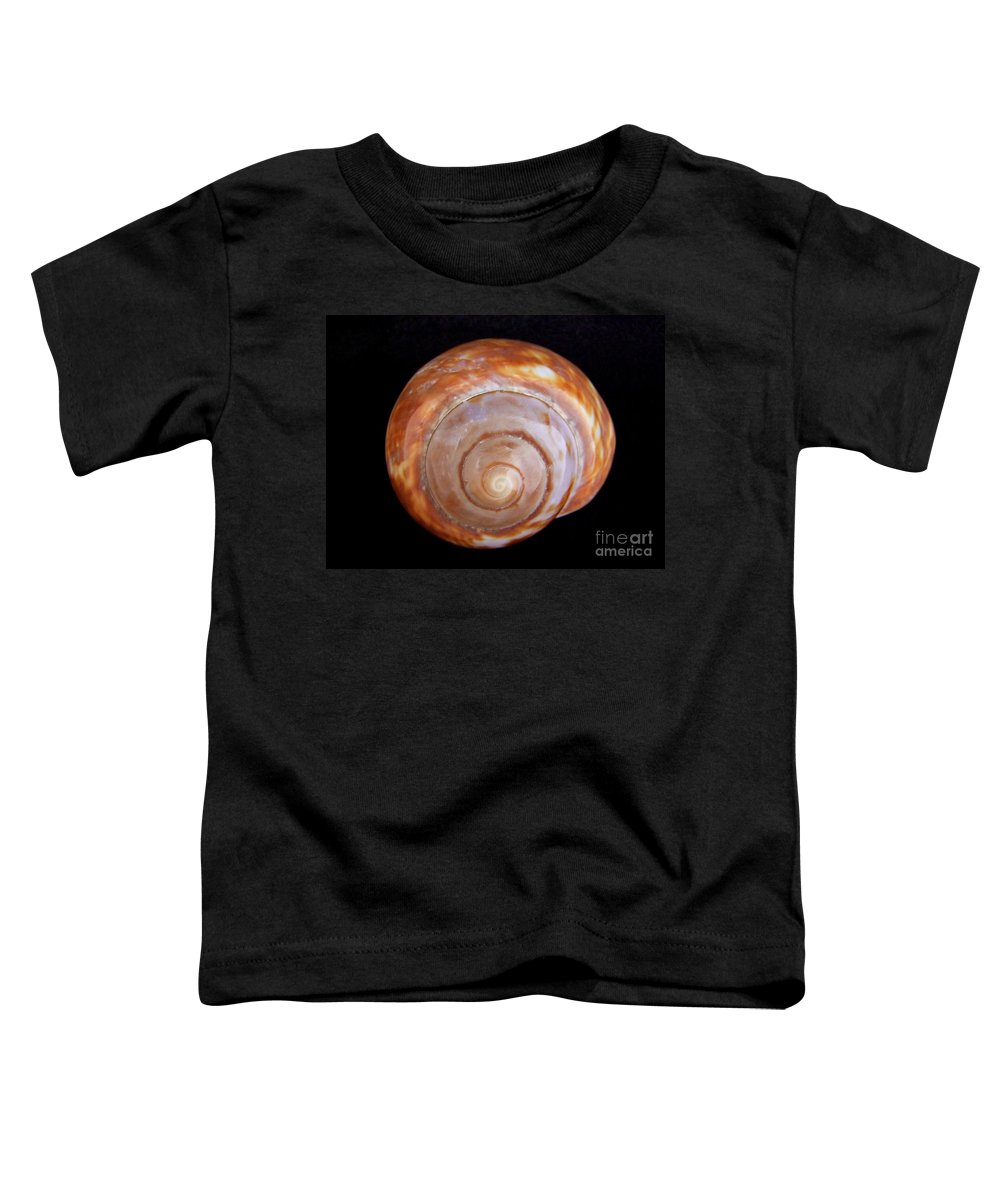 Mary Deal Toddler T-Shirt featuring the photograph Moon Shell by Mary Deal
