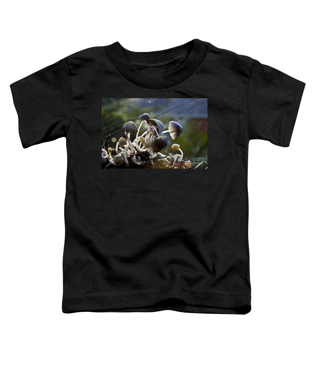 Mushrooms Rain Showers Umbrellas Nature Fungi Toddler T-Shirt featuring the photograph Nature by Sheila Smart Fine Art Photography