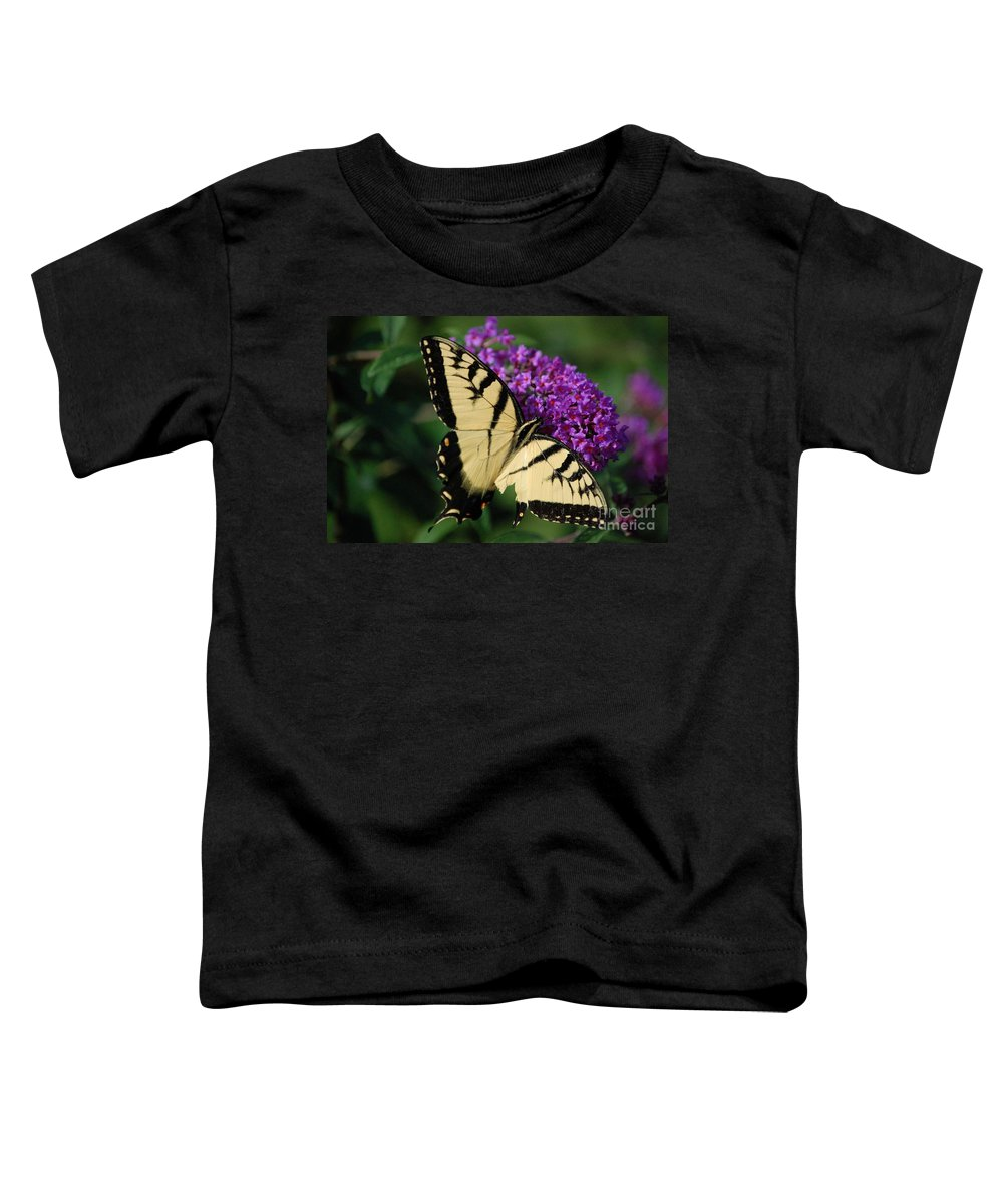 Butterfly Toddler T-Shirt featuring the photograph Nothing Is Perfect by Debbi Granruth