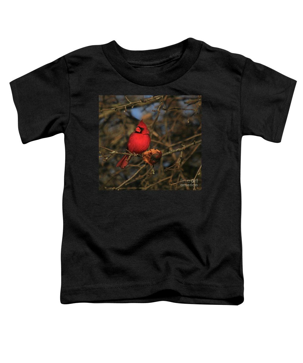 Bird Toddler T-Shirt featuring the photograph Out On A Limb by Robert Pearson