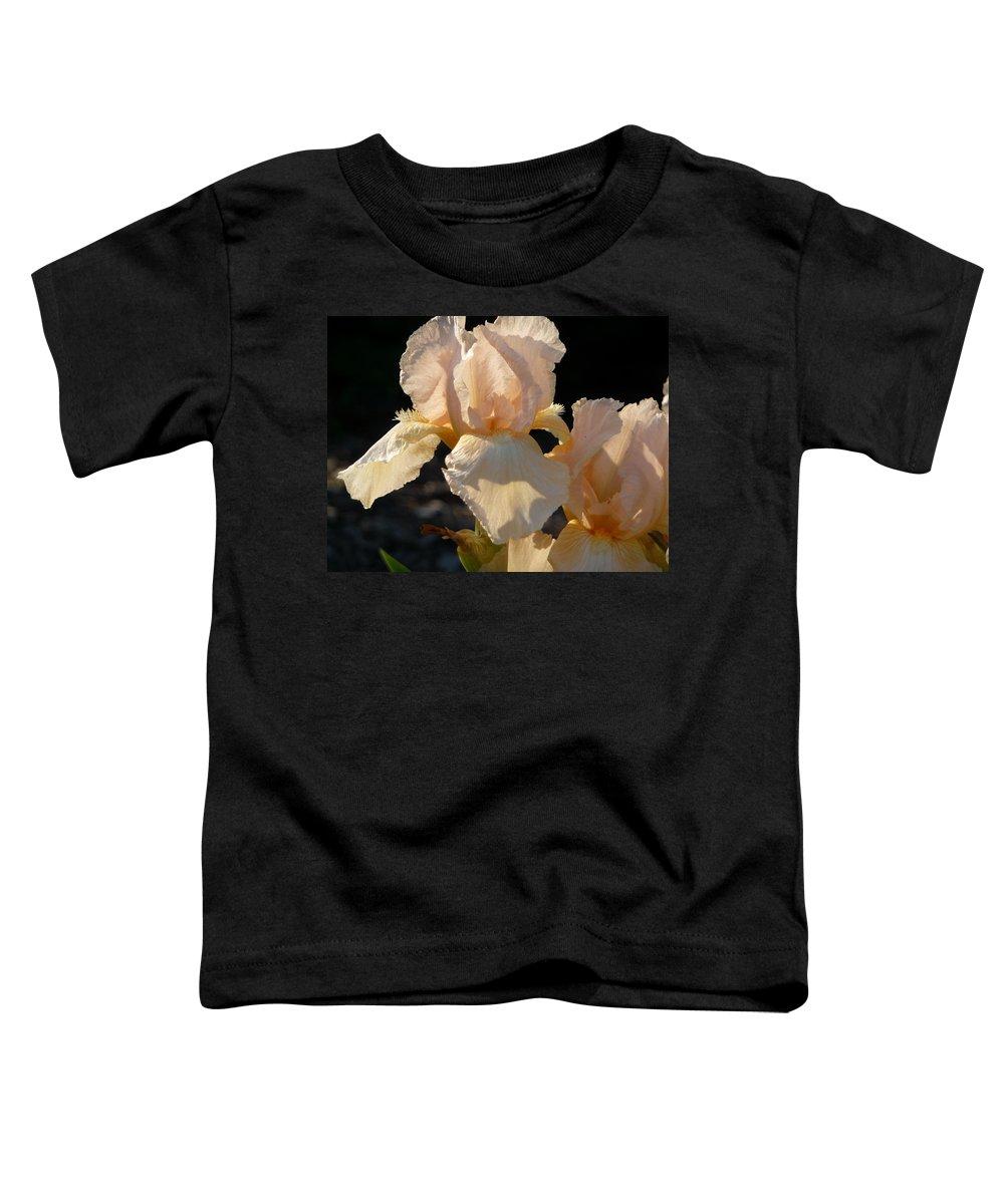 Flower. Iris Toddler T-Shirt featuring the photograph Peach Bearded Iris by Ruth Kamenev