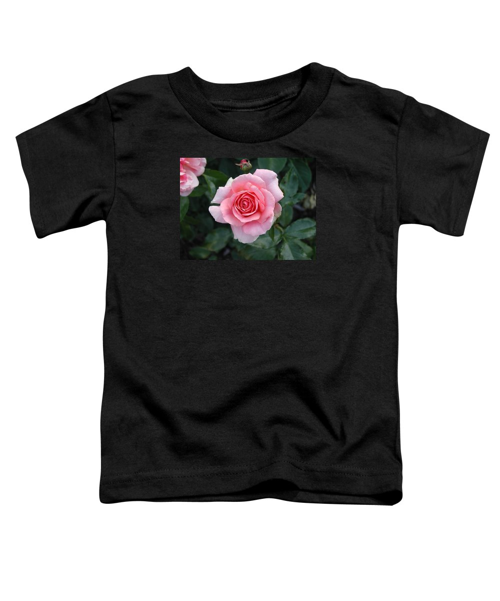 Rose Toddler T-Shirt featuring the photograph Pink Rose by Dave Martsolf