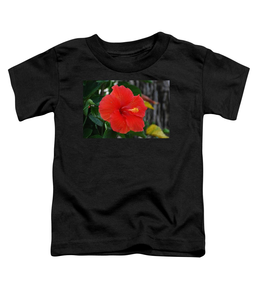 Flowers Toddler T-Shirt featuring the photograph Red Flower by Rob Hans