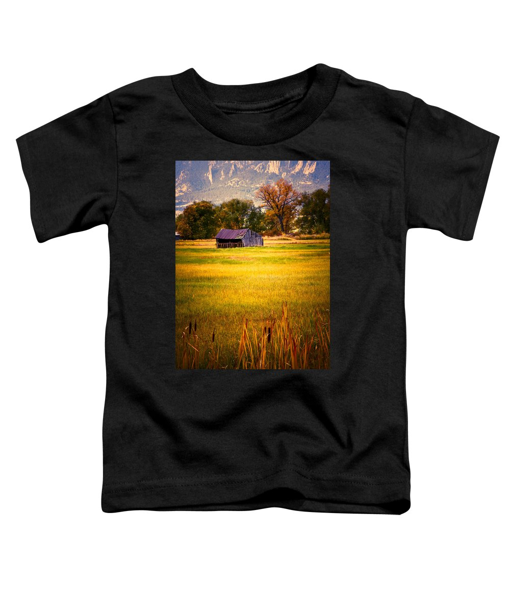 Shed Toddler T-Shirt featuring the photograph Shed In Sunlight by Marilyn Hunt
