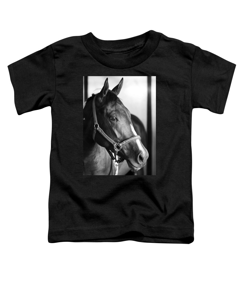 Horse Toddler T-Shirt featuring the photograph Horse And Stillness by Marilyn Hunt