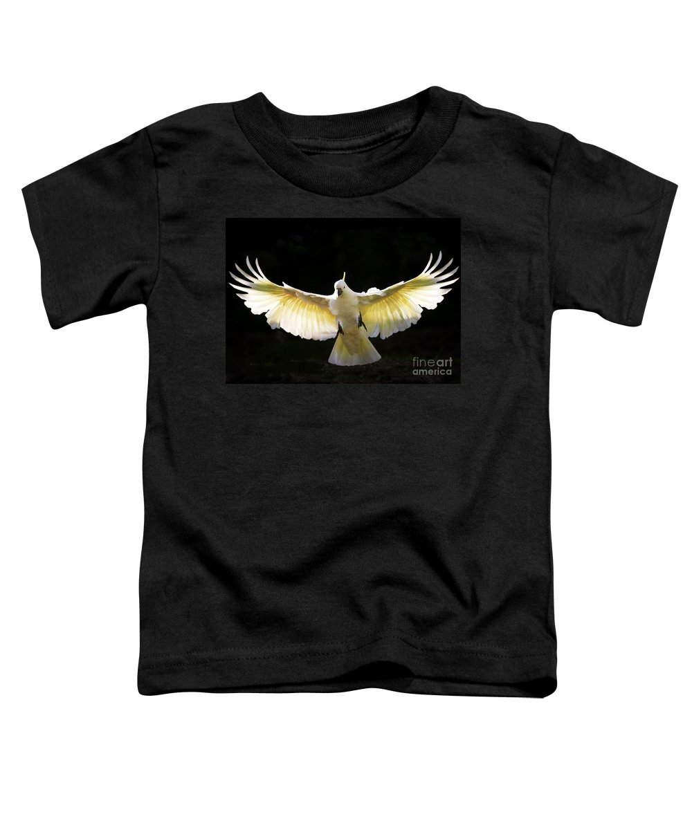 Sulphur Crested Cockatoo Australian Wildlife Toddler T-Shirt featuring the photograph Sulphur Crested Cockatoo In Flight by Sheila Smart Fine Art Photography