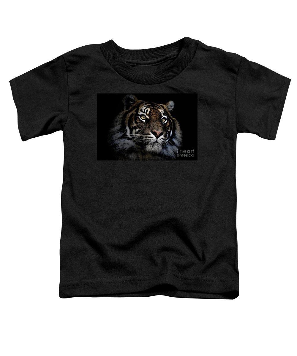 Sumatran Tiger Wildlife Endangered Toddler T-Shirt featuring the photograph Sumatran Tiger by Sheila Smart Fine Art Photography