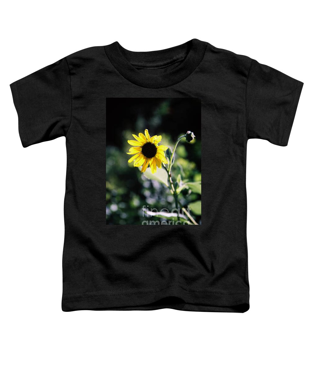 Sunflower Toddler T-Shirt featuring the photograph Summer Sunshine by Kathy McClure
