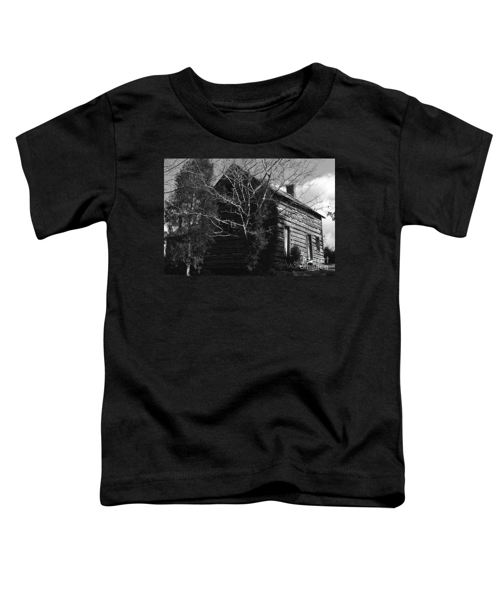 Cabins Toddler T-Shirt featuring the photograph The Homestead by Richard Rizzo