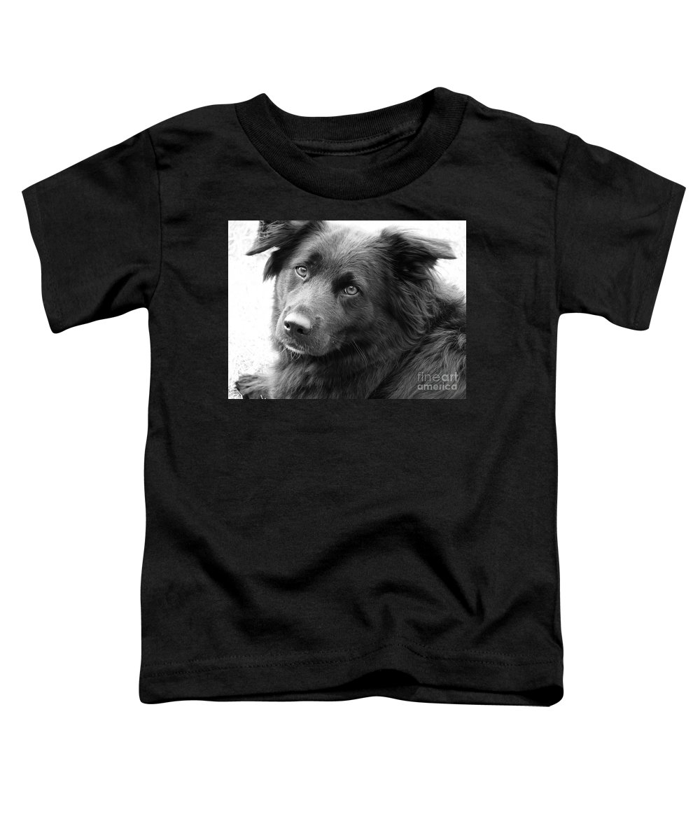 Dog Toddler T-Shirt featuring the photograph Thinking by Amanda Barcon